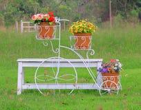 угловойой зеленый цвет сада ослабляет Стоковая Фотография