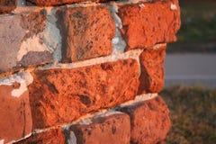 угловойой красный цвет Стоковые Фотографии RF