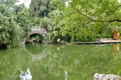 угловойой сад Стоковые Изображения RF