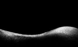 уговаривать силуэта Стоковая Фотография RF