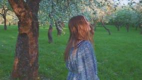 Уговаривая молодая женщина идя в яблоневый сад весной цветет белизна r видеоматериал
