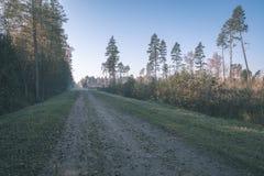 угождать дороге гравия страны чувств или разума астетически в цветах осени в цветах падения с туманом и туманными деревьями на об стоковая фотография