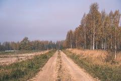 угождать дороге гравия страны чувств или разума астетически в цветах осени в цветах падения с туманом и туманными деревьями на об стоковое изображение