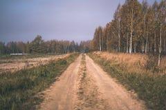 угождать дороге гравия страны чувств или разума астетически в цветах осени в цветах падения с туманом и туманными деревьями на об стоковое изображение rf