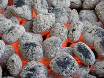 уголь брикетов Стоковое фото RF