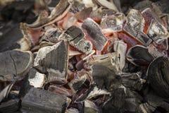 Угли огня Текстура угля Горя уголь стоковые фото