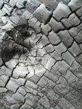 Уголь стоковые изображения rf