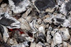 Уголь и, который сгорели древесина Стоковое фото RF