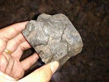 Уголь лигнита на руке стоковые изображения rf
