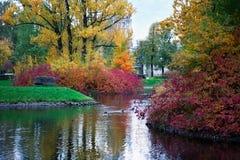 Угол парка города водой стоковое изображение