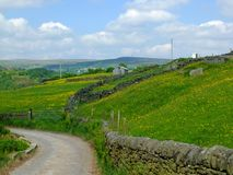 Угол покатого проселочной дороги идя окруженный стенами камней и лугами весны в сельской местности участков земли Йоркшира стоковые изображения rf