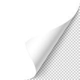 угол завил иллюстрация вектора