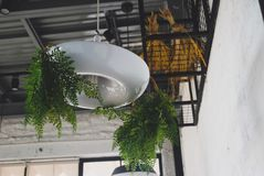 Угол кофейни Стоковое Фото