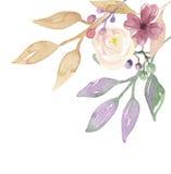 Угол рамки ягод акварели выходит лист ягоды лета весны цветков Стоковая Фотография