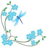 Угол с синью забывает меня не цветки и dragonfly на белой предпосылке бесплатная иллюстрация
