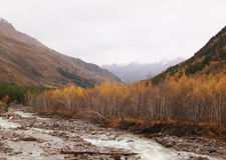 Угрюмый ландшафт осени Стоковое Изображение