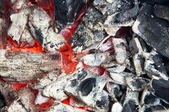 Угли лагерного костера в крупном плане леса Стоковые Фотографии RF