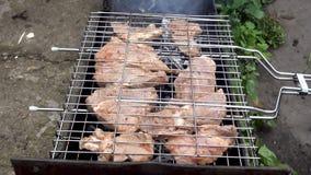Угли в меднике Мясо на гриле Мясо зажарено на углях Аппетитное зажаренное в духовке мясо на углях свинина сток-видео