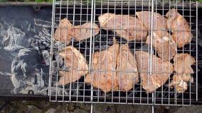 Угли в меднике Мясо на гриле Мясо зажарено на углях Аппетитное зажаренное в духовке мясо на углях свинина видеоматериал