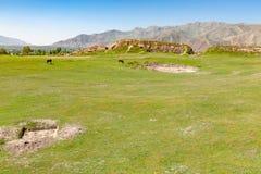 Удаленный луг в горах стоковые изображения rf