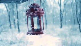 Удерживание в фонарике свечи красной перчатки красном в лесе зимы сток-видео