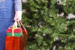 удерживание девушки подарков рождества мешка Стоковое Изображение