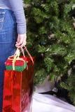 удерживание девушки подарков рождества мешка Стоковые Фото
