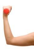 удерживание руки гантели женское Стоковая Фотография RF