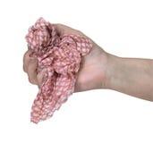 удерживание руки ткани чистки Стоковые Изображения RF