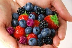 удерживание руки ягод женское Стоковое Изображение RF