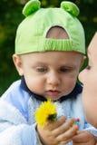 удерживание цветка ребенка Стоковые Фотографии RF