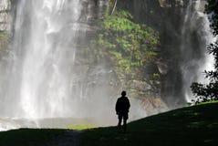 удивительнейший водопад Стоковые Фотографии RF