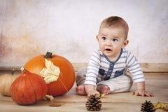 Удивленный маленький малыш сидя на поле с тыквами Стоковое Изображение RF