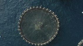Удите клетки для аквакультуры более легкий путь для сельского хозяйства рыб на открытом береге, и сохраните потребление земли сток-видео