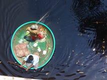 Удить в реке Cauvery на Nisargadhama стоковые изображения rf