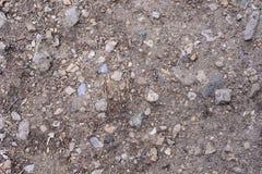 Удобрите текстуру, серую земную текстуру почвы смешанную с малыми утесами Россией стоковые изображения rf