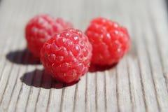 Удовольствие ягоды рая стоковые изображения