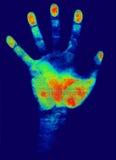 удостоверение личности руки иллюстрация вектора