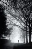 Уединенный бегун на туманном утре стоковая фотография rf