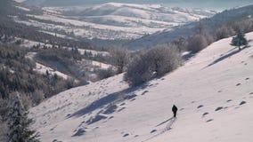 Уединенный турист идет через снег в путешественнике леса горы в человеке леса a зимы снежном молодом с a видеоматериал