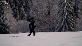 Уединенный турист идет через снег в путешественнике леса горы в человеке леса a зимы снежном молодом с a сток-видео