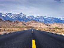 уединённая дорога сосенки к Стоковая Фотография RF