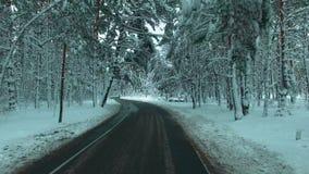 Уединённый бегун в зимнем деревянном воздушном отснятом видеоматериале трутня сток-видео