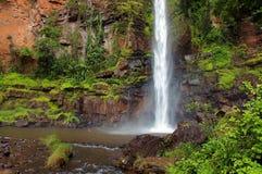 Уединённый водопад Южно-Африканская РеспублЍ заводи Стоковые Фотографии RF