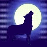 уединённый волк иллюстрация штока