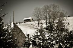 Уединённый малый дом на горе в пуще зимы - monochrome Стоковое Изображение