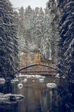 Уединённый мост над рекой зимы стоковое фото rf