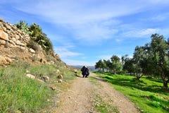 Уединённый путешественник рассматривая его находить Стоковые Фото