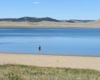 Уединённый рыболов на резервуаре Spinney стоковое изображение