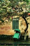 Уединённое зеленое Pedicab под деревом на дождливый день Стоковые Фотографии RF